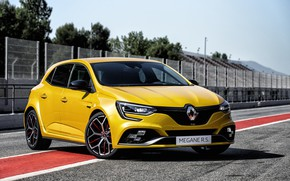 Picture Renault, hatchback, 2018, Trophy, Megane RS