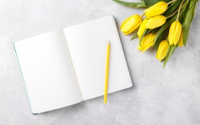 Picture flowers, bouquet, tulips, Notepad, pencil