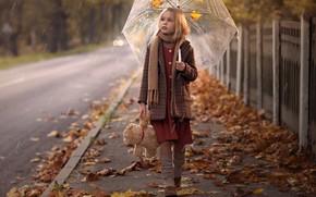 Picture autumn, umbrella, girl