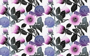 Picture white, leaves, flowers, background, pattern, roses, vector, pink