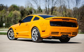 Picture Mustang, Ford, 2008, Saleen, S302, Extreme