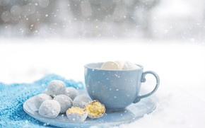 Picture winter, snow, cookies, hot chocolate