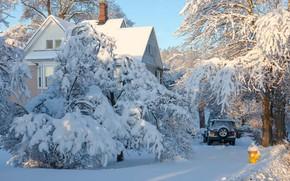 Picture winter, snow, trees, landscape, nature, house, car, Antonina Janowska