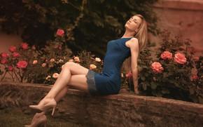 Wallpaper flowers, pose, lawn, model, portrait, roses, makeup, garden, figure, slim, dress, hairstyle, blonde, shoes, legs, ...