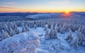 Picture winter, forest, snow, mountains, sunrise, dawn, hills, morning, ate, Czech Republic, Czech Republic, Olomouc Region, …