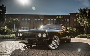 Picture Chevrolet, Chevelle, Vehicle, Chevelle SS