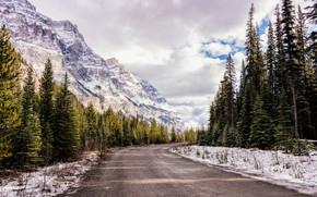 Picture road, asphalt, landscape, mountains, nature