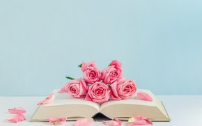 Picture flowers, roses, petals, book, pink, buds, pink, flowers, romantic, petals, roses, cute