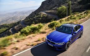 Picture mountains, vegetation, BMW, slope, sedan, BMW M5, 2017, M5, F90