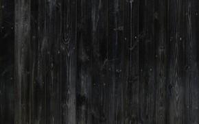 Picture background, dark, structure, decor
