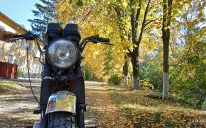 Picture autumn, leaves, Moto, Jupiter