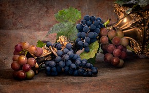 Picture leaves, blue, red, metal, berries, background, food, grapes, lies, fruit, gold plated, still life, stand, …