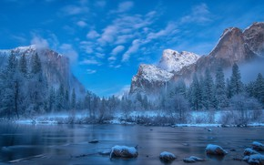 Wallpaper winter, mountains, snow, tree