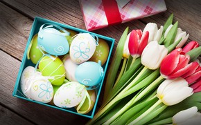 Picture eggs, spring, Easter, tulips, flowers, easter