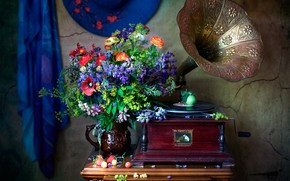 Picture summer, Maki, bouquet, strawberry, the gramophone, Ranunculus, Lupin