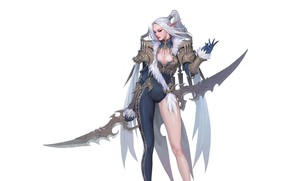 Picture Girl, Fantasy, Beautiful, Sexy, Art, Style, Minimalism, Characters, Armor, Figure, Canine, Bageumi