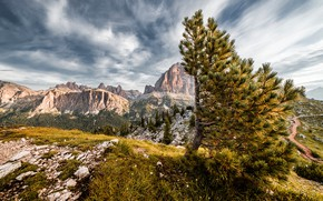 Picture the sky, clouds, mountains, stones, tree, rocks, tops, view, pine