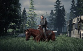 Picture Ellie, The Last of Us, Naughty Dog, Some of us, Ellie, PS4, Survival, Games Survival
