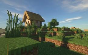 Picture day, minecraft, village