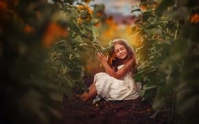 Picture field, sunflowers, nature, girl, child, Любовь Пятовская