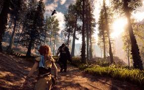 Picture forest, girl, nature, male, hunters, goose, Horizon Zero Dawn