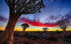 Picture Sky, Namibia, Pallette, Keetmanshoop