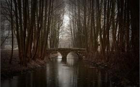 Picture autumn, bridge, Park, river