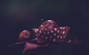 Picture background, Apple, food