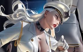 Picture neckline, gloves, cap, badge, military uniform, barcode, soldier, chalker, long white hair