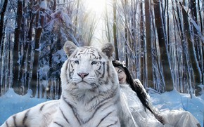 Picture winter, forest, white, look, face, girl, light, snow, trees, tiger, pose, rendering, together, treatment, sitting, …