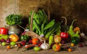 Picture harvest, still life, vegetables, autumn, still life, vegetables, harvest