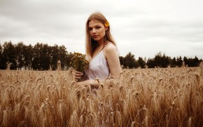 Picture wheat, field, look, girl, trees, flowers, model, portrait, makeup, dress, hairstyle, ears, brown hair, nature, …