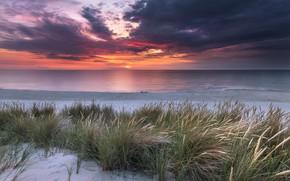 Picture sand, sea, grass, landscape, sunset, clouds, nature, shore, Robert Kropacz