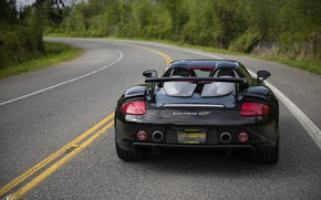 Picture Porsche, supercar, rear view, Carrera GT