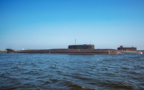 Picture eagle, submarine, the nuclear-powered ship