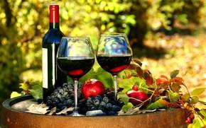 Picture wine, glasses, grapes, garnet