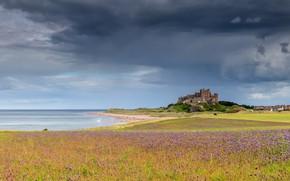 Picture sea, flowers, castle, shore, coast, view, meadow