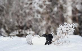 Picture winter, snow, love, heart, love, heart, winter, snow, romantic, valentine