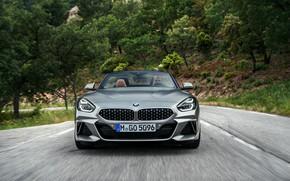Wallpaper road, grey, vegetation, BMW, Roadster, front view, BMW Z4, M40i, Z4, 2019, G29