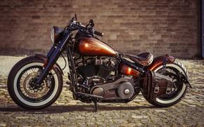 Picture Harley Davidson, Harley-Davidson, Custom, Slim, Motorcycle, Thunderbike, By Thunderbike, COPPER PENNY