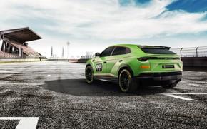 Picture Concept, Lamborghini, rear view, Urus, 2019, ST-X