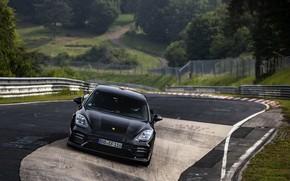 Picture black, track, Porsche, Panamera, The Nürburgring, 2020, Nordschleife, предсерийный