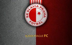 Picture wallpaper, sport, logo, football, Slavia Prague