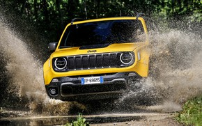 Picture 2018, Jeep, Trailhawk, Renegade