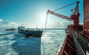 Picture Oil, The ship, Tanker, Приразломная, Печорское море, Шельф