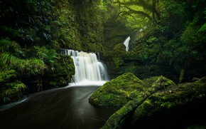 Picture greens, forest, river, stones, waterfall, moss, New Zealand, cascade, New Zealand, Tautuku River, Lower McLean ...