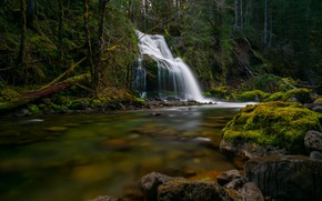 Picture forest, river, stones, waterfall, moss, cascade, Gifford Pinchot National Forest, Washington State, Washington, Национальный заповедник …