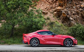 Picture rock, tree, coupe, Toyota, side, Supra, the fifth generation, in profile, mk5, double, 2019, GR …