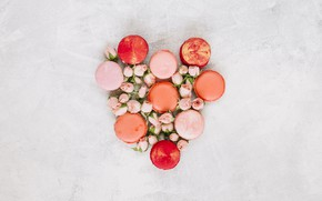 Picture flowers, roses, colorful, buds, pink, flowers, cakes, roses, macaroon, macaron, macaroon