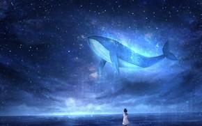 Picture sea, the sky, night, fantasy, kit, schoolgirl